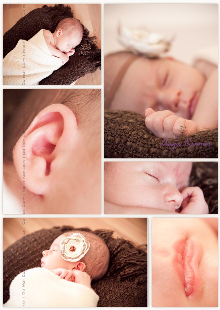 Babyfotos Babyfotograf Magdeburg Fotostudio
